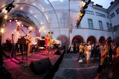 2010 kulturfestival